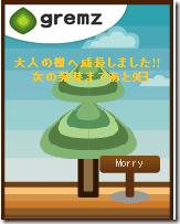 グリムスの樹がようやく大人の樹になりました。
